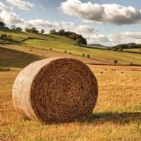 Rural Publications